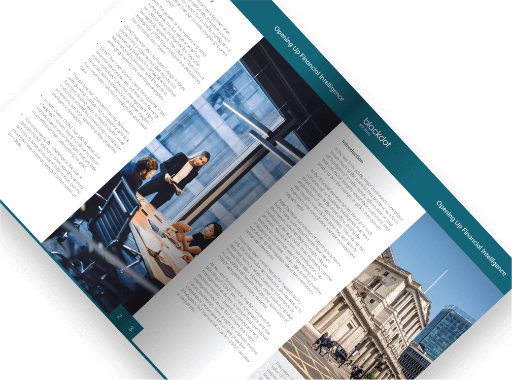 Blackdot Financial Intelligence Report Open Cover